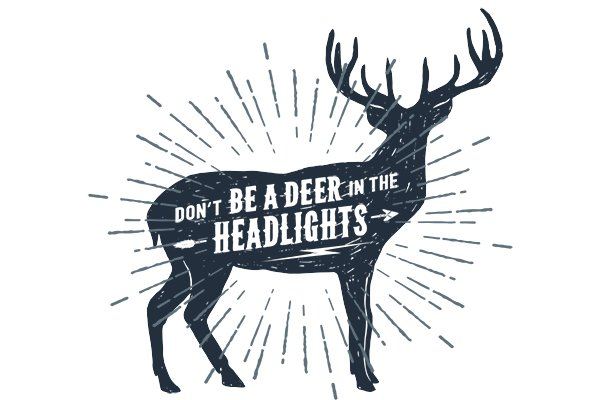 Don't Be a Deer in Headlights When Trading